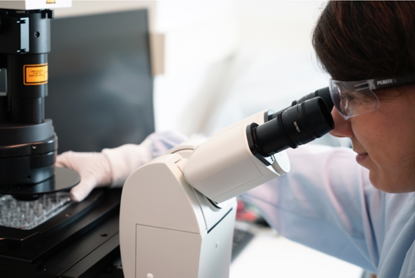 Scientist observing cell growth through a microscope