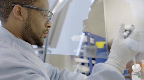Scientist working with cells